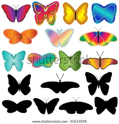 Vector set of isolated butterfly elements with silhouettes.