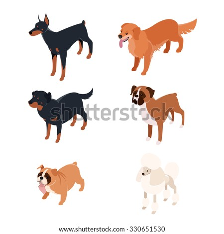 Vector set of isometric icons of various dogs - stock vector