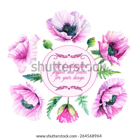 Vector set of lilac, violet,  poppies, buds, leaves for design. Watercolor flowers, leaves. Set of floral elements to create compositions.  - stock vector