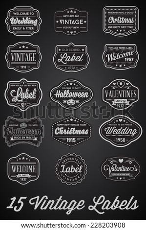 Vector Set of 15 of Vintage Retro Style Premium Design Labels Black and White - stock vector