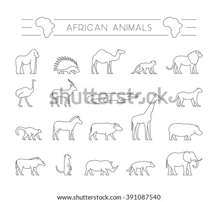 Vector set of outline African animals. Vector line silhouette of gorilla, warthog, porcupine and dromedary. Geometric linear animals of Africa. The outline silhouette of ostrich, hyena and zebra. - stock vector