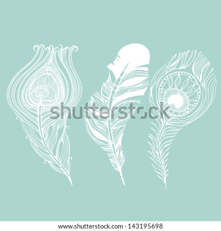 Vector set of peacock and raven feathers. - stock vector
