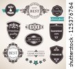 Vector set of retro labels, buttons and icons - stock vector