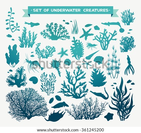 Vector set of sea animals - coral, fish, shrimp, seashells and starfish. Underwater ocean creatures on a white background. - stock vector