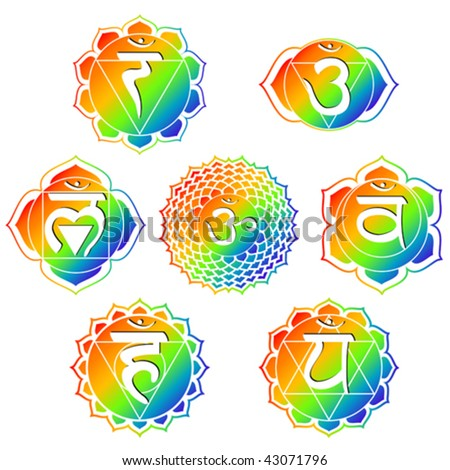 vector set of seven rainbow color chakras