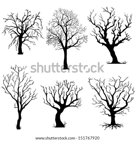 Vector Set of Silhouettes of Trees - stock vector