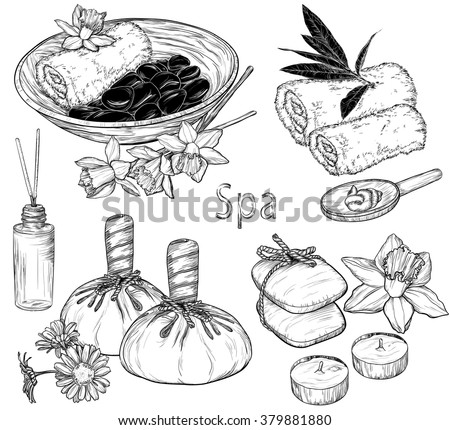 Vector set of spa illustrations, Beauty and health care sketch  - stock vector