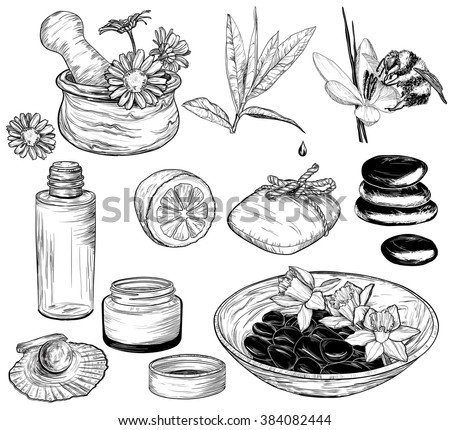 Vector set of spa illustrations, Beauty and health care sketch, organic products  - stock vector