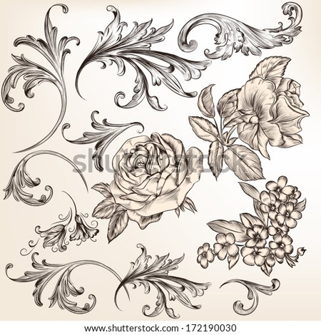 Vector set of swirl and floral elements for design. Calligraphic vector - stock vector