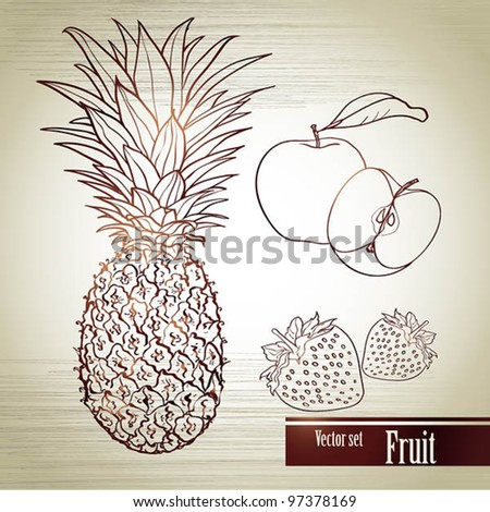 Vector set of the fruit drawn by hands - stock vector