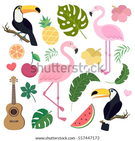 Vector set of tropical palm banana leaf flamingo toucan birds ukulele guitar