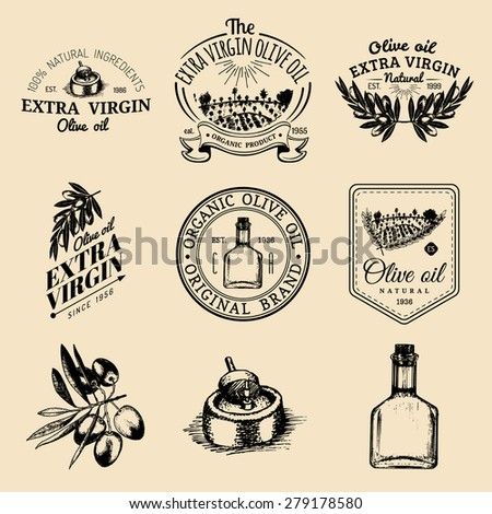 Vector set of vintage olive oil logo. Retro hand sketched logotypes collection with olive elements - stock vector