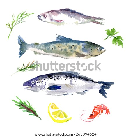 Vector set of watercolor sea food. Fish set on white back ground. Food illustration. - stock vector