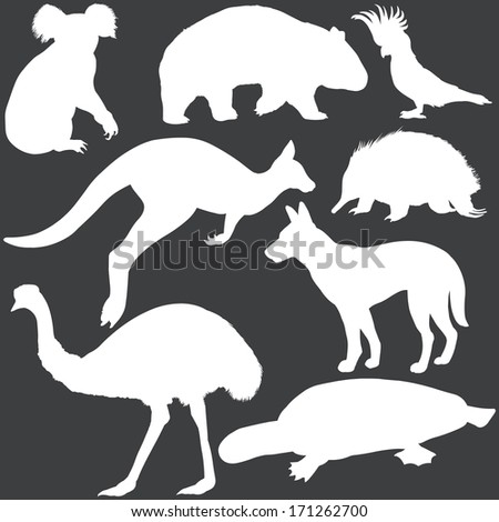 vector set of white australian animals silhouettes - stock vector
