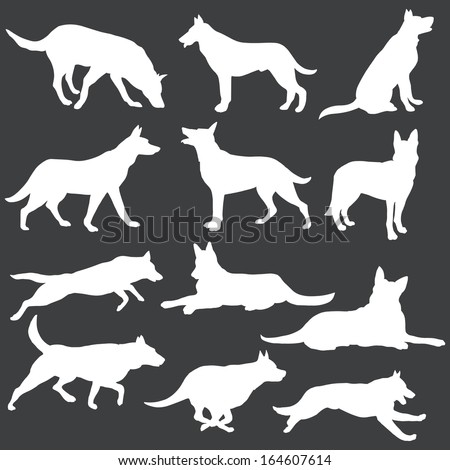 vector set of white dogs silhouettes  - stock vector