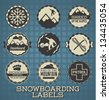 Vector Set: Snowboarding Labels and Icons - stock vector