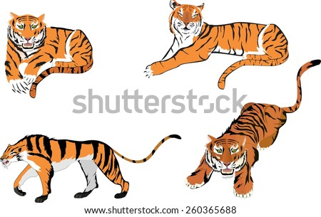 Vector Set: Tiger shapes in different poses - stock vector