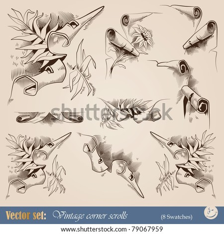 vector set. vintage corners for decoration in the form of ragged edges of old scrolls - stock vector