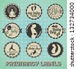 Vector Set: Vintage Pregnancy Labels and Icons - stock vector