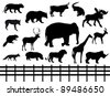 vector set: wild animals - stock vector
