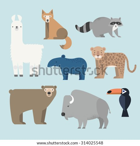 Vector set Wild animals. Lama, raccoon, tapir, grizzly bear, coyote, buffalo, cockatoos and jaguar. North and South America. Flat style character. Vector illustration - stock vector