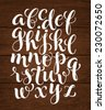 Vector set with hand written ABC letters on wood background. Calligraphy collection - stock vector