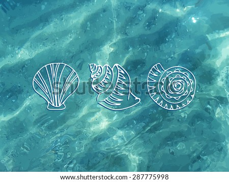 Vector shiny blue ocean realistic water with shells. Summer vector illustration can be used for web design, surface textures, summer posters, trip and vacations cards design. - stock vector
