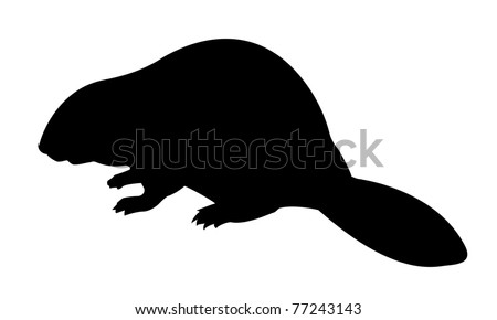 vector silhouette beaver on white background - stock vector