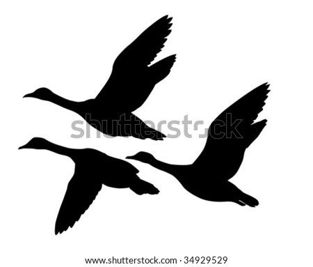 vector silhouette flying geese on white background - stock vector