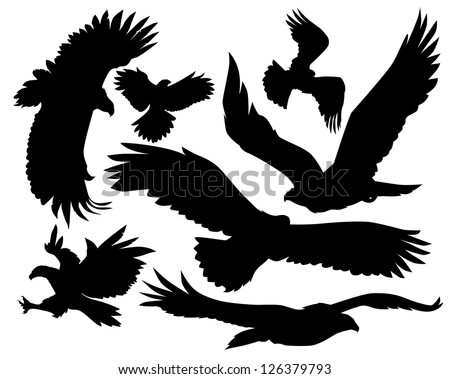 Hawk Silhouette Stock Images, Royalty-Free Images ... Flying Hawk Silhouette Vector
