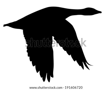 vector silhouette of the goose in flight