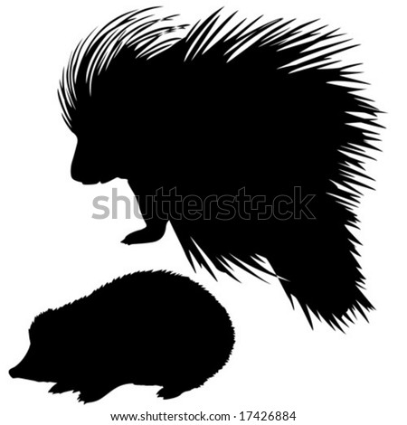 vector silhouette of the hedgehog and porcupine on white background - stock vector