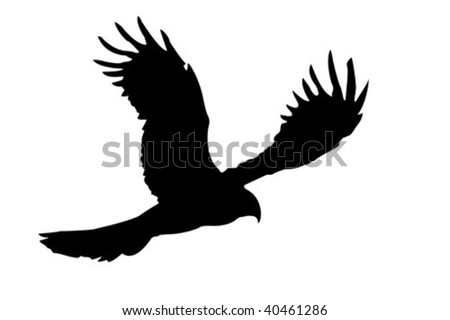 vector silhouette of the ravenous bird - stock vector