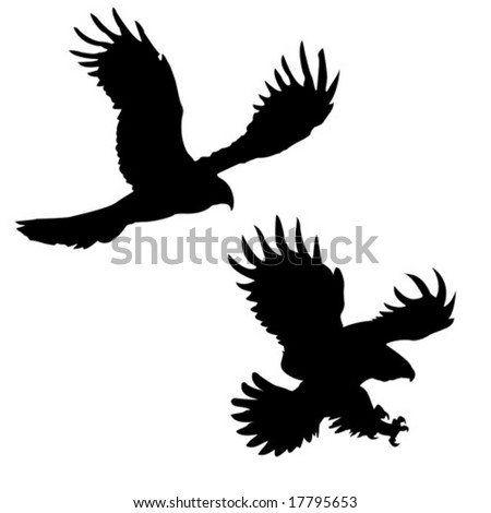 vector silhouette of the ravenous birds on white background - stock vector