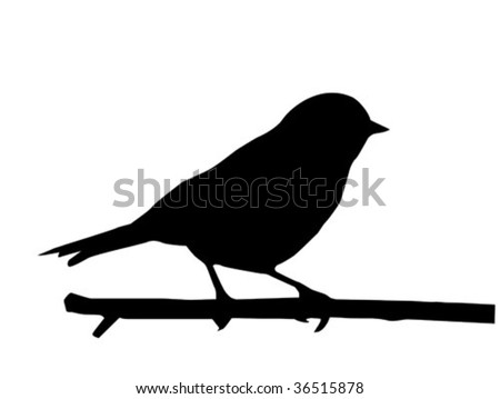 vector silhouette of the small bird on branch - stock vector