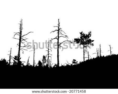 vector silhouette old dry wood - stock vector