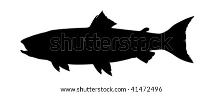 vector silhouette salmon on white background - stock vector
