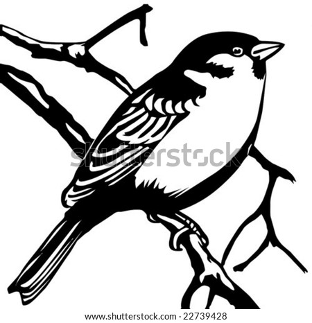 vector silhouette sparrow on white background - stock vector