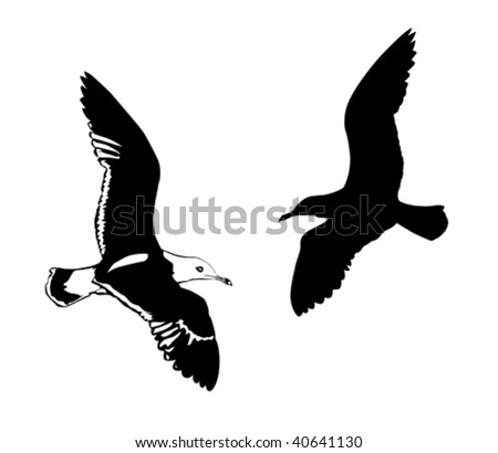 vector silhouettes flying birds on white background - stock vector