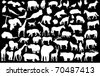 vector silhouettes of different animals wild and domestic - stock vector