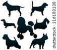 Vector silhouettes of dogs for your design - stock