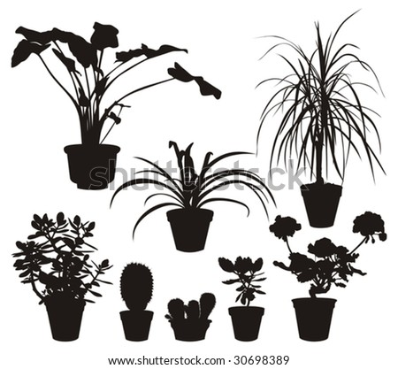 Vector silhouettes of eight different home flowers.