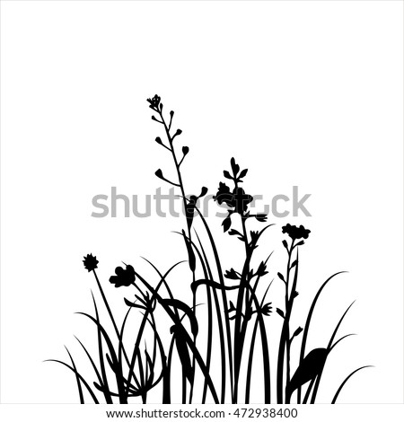 vector silhouettes of flowers and grass, background with wild plants, herbal backdrop, black monochrome floral template, hand drawn illustration