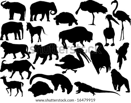 Vector silhouettes of miscellaneous animals - stock vector