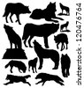 vector silhouettes of wolves - stock vector