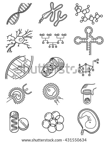 Vector simplicity science icons set with genetic and microbiological objects. Medical collection with DNA and RNA molecule, neuron and embryo cells, in vitro fertilization process, Genetic Engineering - stock vector