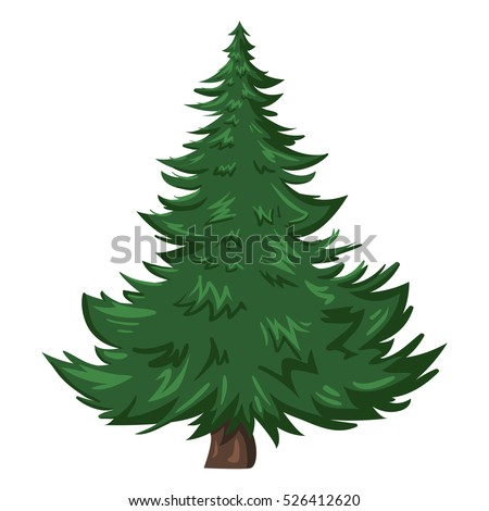 vector single isolated cartoon pine tree stock vector royalty free rh shutterstock com how to draw cartoon pine trees how to draw cartoon pine trees