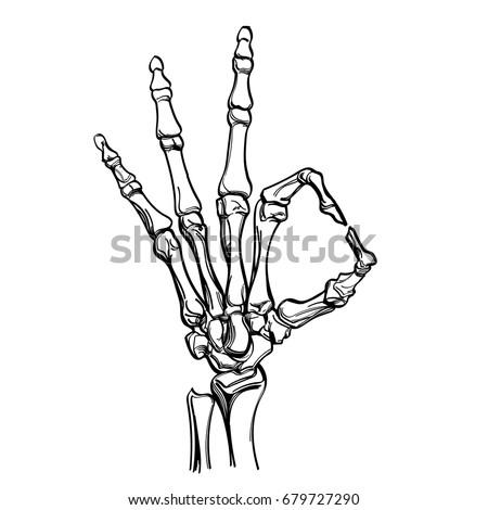 Vector Skeleton Hand Showing Gesture Ok Stock Vector 679727290 ...