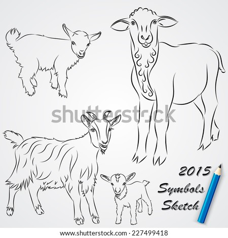 vector sketch drawing of goats and sheep chinese 2015 new year symbol