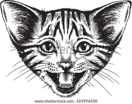 Vector sketch of a small kitten meowing - stock vector